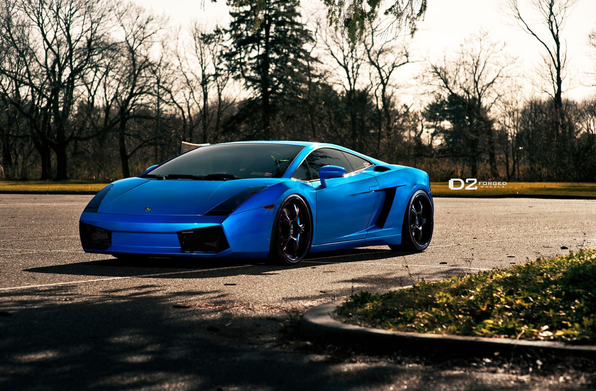 Blue Perfection From D2forged Lamborghini Gallardo Shoot